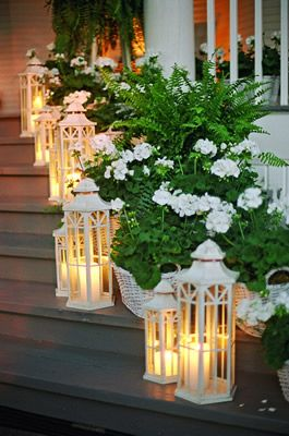 beautiful plants and lanterns for entrance to a party