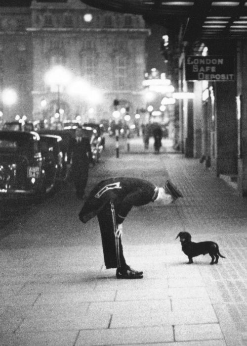 """Commissionaire's Dog, 22nd October 1938 Caption: A hotel commissionaire talking to a small dachshund dog in Piccadilly Circus, London. Original publilshed in Picture Post """"In The Heart of the Empire """" 1938 Photo by Kurt Hutton"""