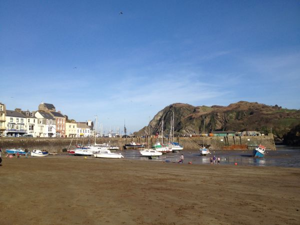Ilfracombe: the talking town