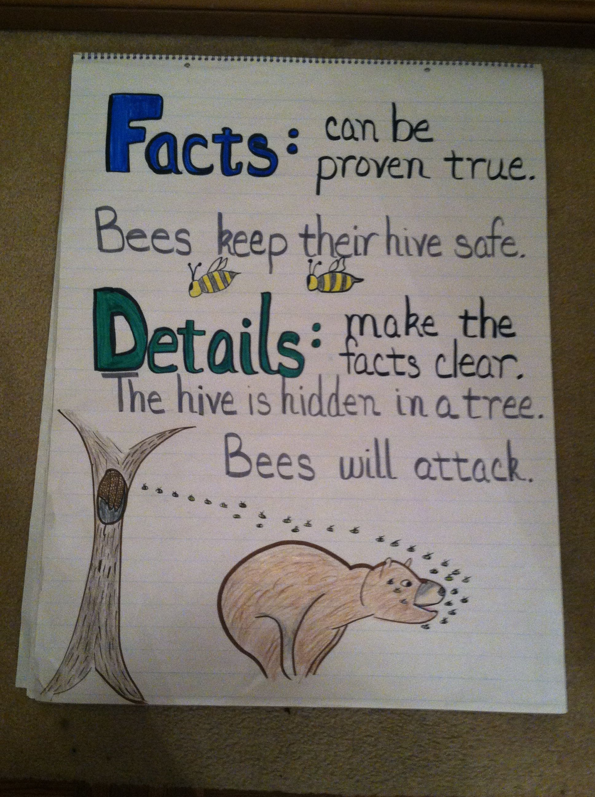 Fact And Detail