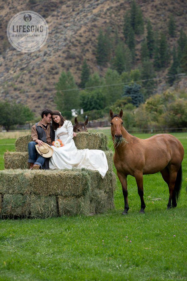 nunta la ferma, mire si mireasa, cadru natural, verde, nunta la munte
