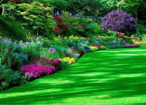 beautiful flower gardens pinterest Beautiful Flower Bed | Gardening | Pinterest