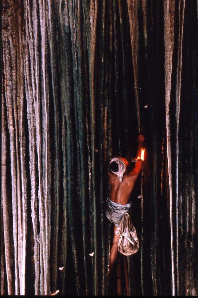 Ombra Hunters: Eric ValliShadow Hunters: Eric Valli Nelle grotte oscure della Thailandia, generazioni di uomini hanno rischiato la vita per ottenere una merce pregiata - nidi di uccelli commestibili, ingrediente essenziale di una zuppa tradizionale cinese.