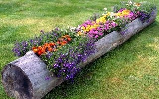 idea for flower bed