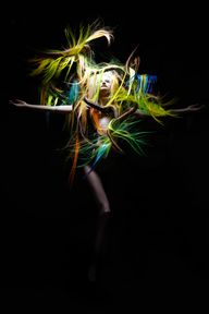 NAHA 2013 Finalist: Avant Garde Matt Swinney Photographer David Byun