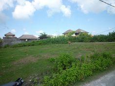 area tanah untuk rumah di jepara, tanah kosong dekat jalan raya jepara, tanah untuk rumah jepara, tanah dijual bisa untuk gudang furniture, jual tanah di jepara