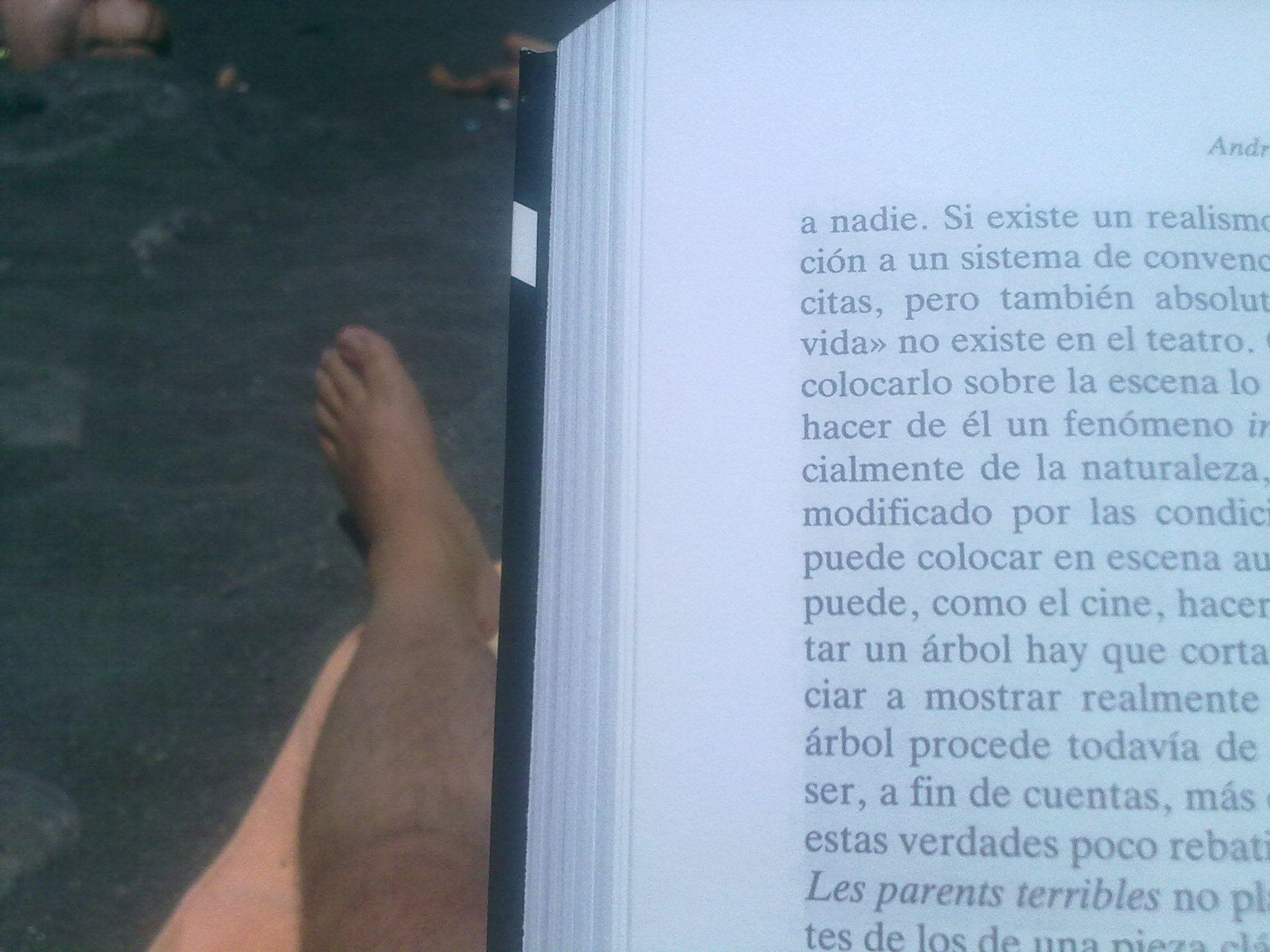 Masilva lee en la playa