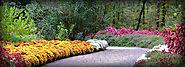 Botanical Gardens in Arkansas - University of Arkansas Botanical Gardens - Garvan Gardens