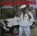 Golden Age of Hip Hop Canon 1986-1990 | Kool Moe Dee - How Ya Like Me Now
