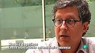 El escarabajo verde - Insecticidas sin factura, El escarabajo verde - RTVE.es A la Carta