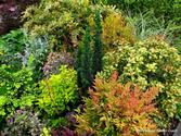 Garden2Blog2014 | Personal Garden Coach
