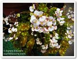 Garden2Blog2014 | Our Little Acre