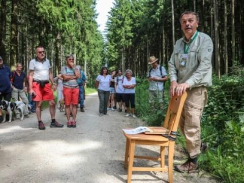 Umweltschutz: Ist der Wald noch zu retten?