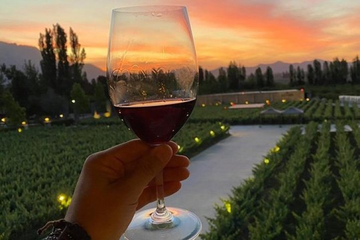 Alyan Sunset! Uma vinícola familiar que vai te encantar ... - Tripadvisor