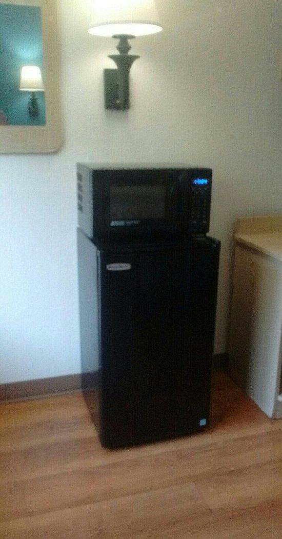 mini fridge freezer and microwave