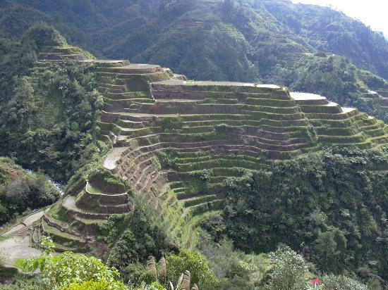 Photos of Banaue Rice Terraces, Banaue