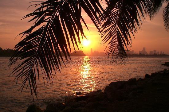 Miami beach at night...