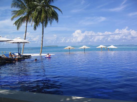 https://i1.wp.com/media-cdn.tripadvisor.com/media/photo-s/01/04/cd/f6/infinity-pool.jpg