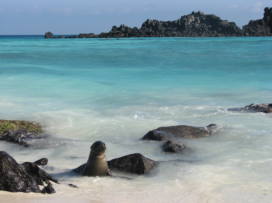 Galapagos Islands Images