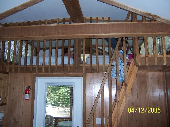 Yogi In The Smokies Campground Reviews Cherokee NC TripAdvisor