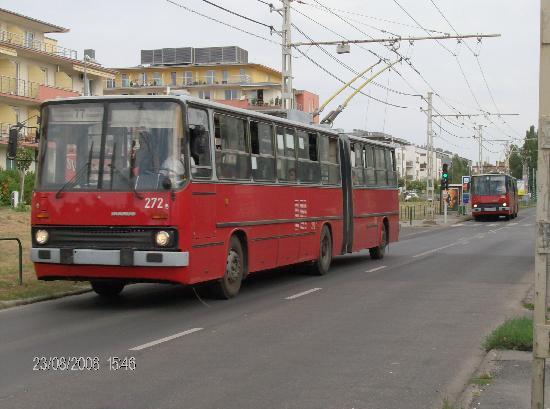 https://i1.wp.com/media-cdn.tripadvisor.com/media/photo-s/01/18/67/af/autobus-82-con-fermata.jpg