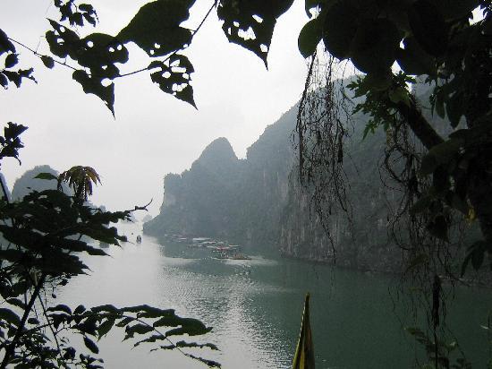 Image du Vietnam sur TripAdvisor.fr