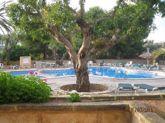 Hotel Y Apartamentos Casablanca Our View Of The Apartments Pool