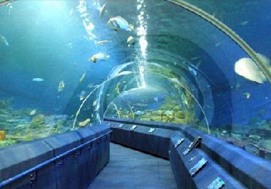 Underwater World Sentosa in Singapore