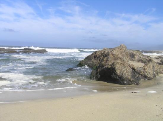 Half Moon Bay Beach House Rental