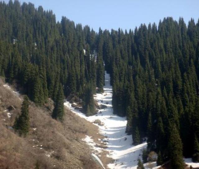 Almaty Kazakhstan The Medeo