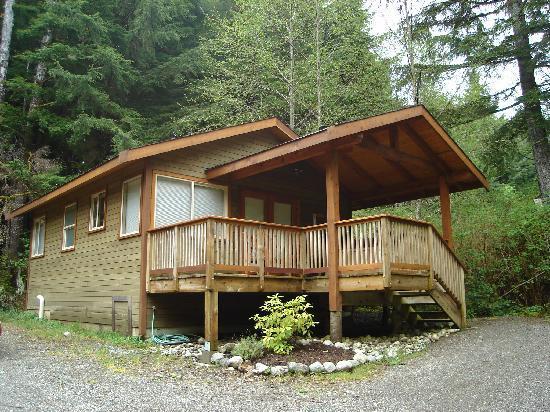 Download tropical evergreen forest stock photos. Evergreen Forest Cabins Ucluelet Kanada Omdomen Och Prisjamforelse Tripadvisor
