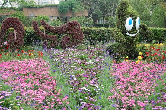 Photos of Shanghai Botanical Garden, Shanghai