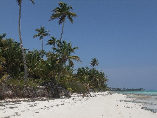 Photos of Emerald Palms by the Sea, Andros