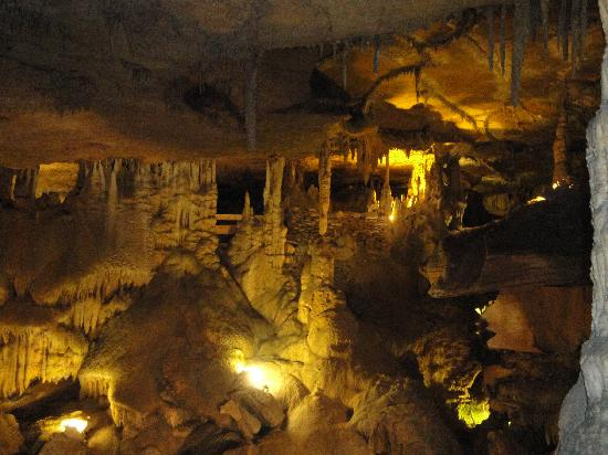 Whether or not you watch mountain men, we're sure that there's a little mountain man hiding in your personality. Raccoon Caverns Chattanooga Tn Picture Of Raccoon Mountain Caverns Chattanooga Tripadvisor