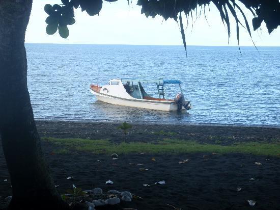 Boat Bus Honolulu
