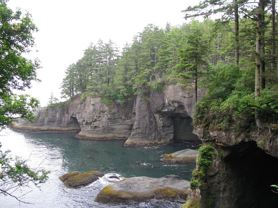 Cape Flattery Trail (Neah Bay) - 2018 All You Need to Know ...