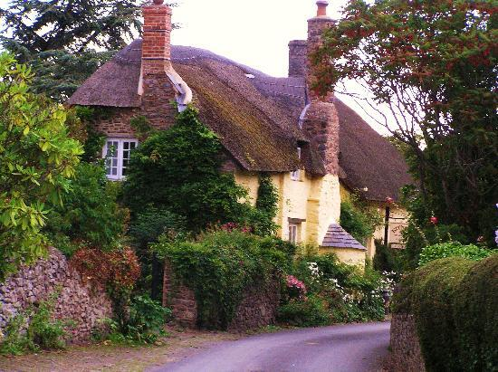 A Cottage Nearby Picture Of Tudor Cottage Allerford TripAdvisor