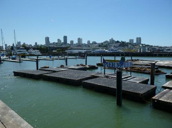 San Fran Pier Restaurants