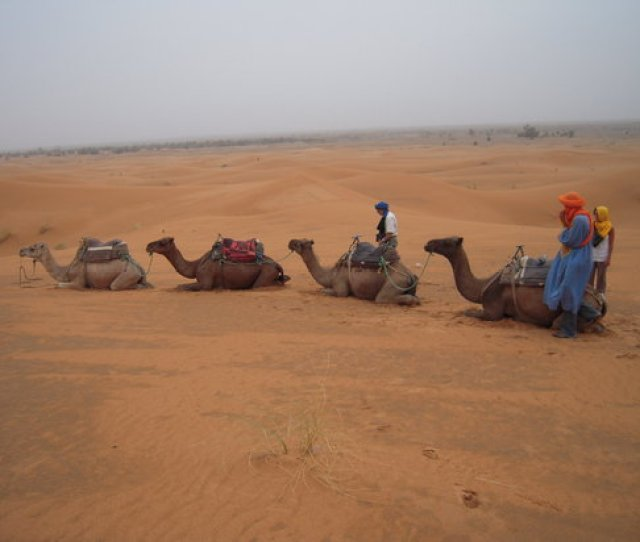 Travel Exploration Morocco Private Tours With Camels In The Desert