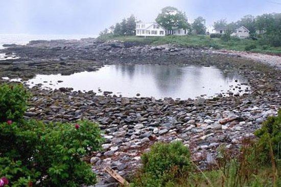 Rachel Carson Salt Pond Preserve New Harbor Me Top