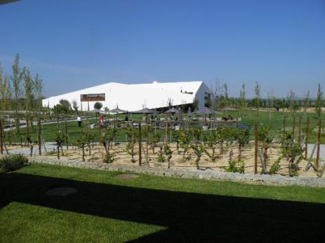 Photos of L'AND Vineyards, Montemor-o-Novo