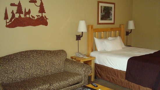 Great Wolf Lodge Bed Bugs Bedding Sets. Check Your Hotel Apartment For  Plaints Of Bed Bugs Pg2