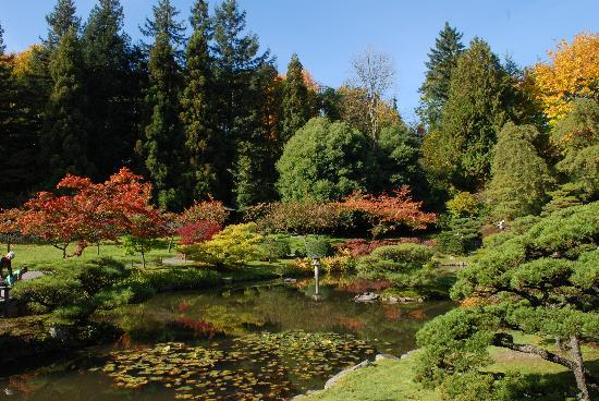 10 free things to do around the university of washington - University of washington botanic gardens ...