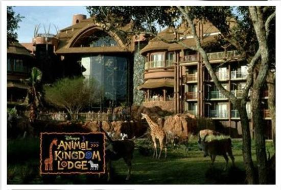 Picture Of Disney's Animal Kingdom Villas