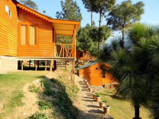 HOTEL PINEWOOD COTTAGES KASAULI (Himachal Pradesh) - Campground Reviews,  Photos, Rate Comparison - Tripadvisor