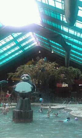 playing basketball - Picture of Wild Bear Falls Waterpark ...