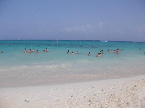Playa Mamitas Playa Del Carmen Picture Of Playa Del