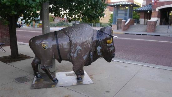 Buffalo statue in Bricktown - Picture of Bricktown ...