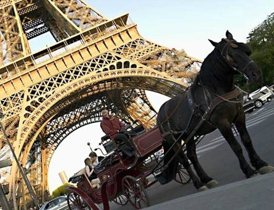Photos of Paris Horse and Carriage Rides, Paris