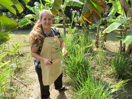 best trip cooking school cutting fresh lemon grass from the thai herb garden